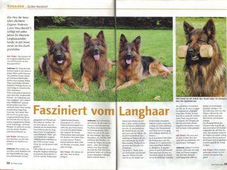 page1-aklein.jpg